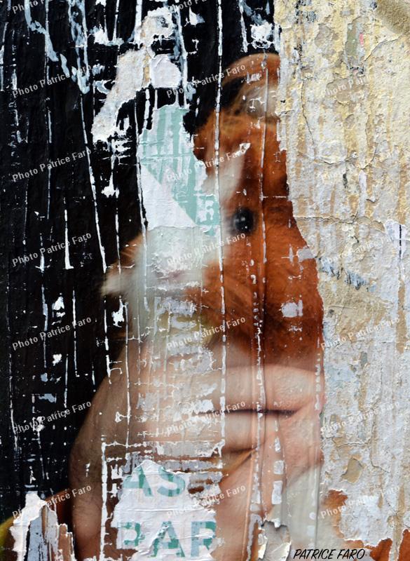 Photo affiche déchirée - Patrice Faro
